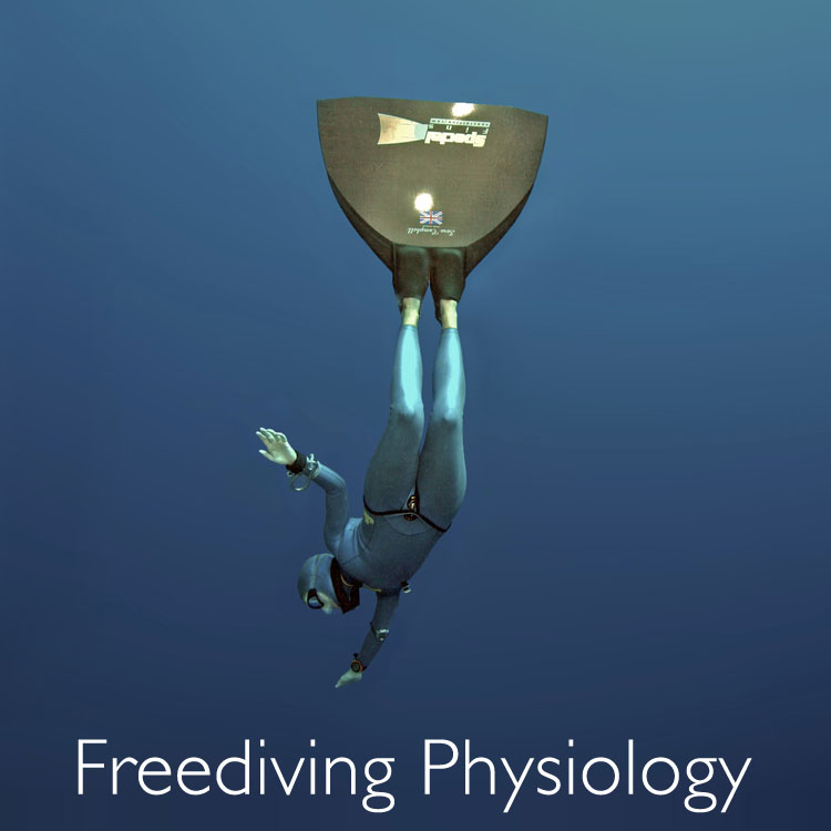 dyd-freediving-physiology-text.jpg