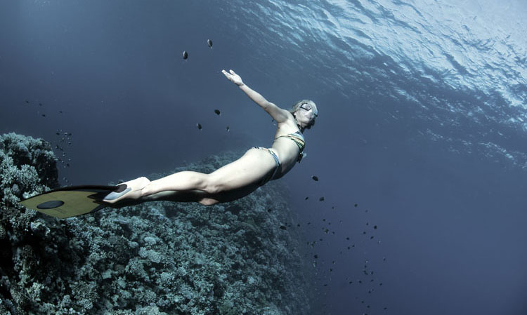 dyd-sara-freediving-angel.jpg