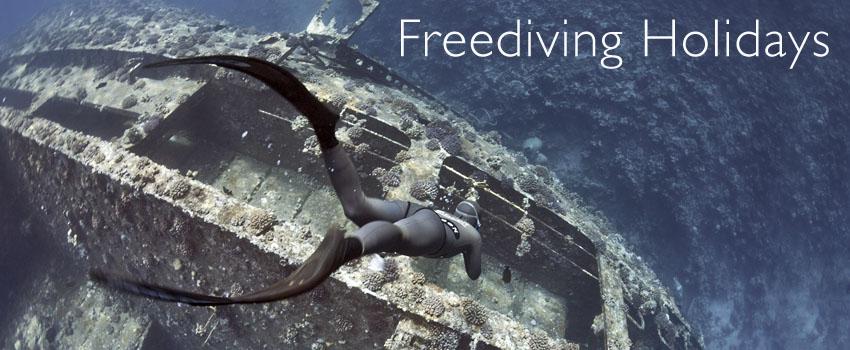 dyd-freediving-holidays.jpg