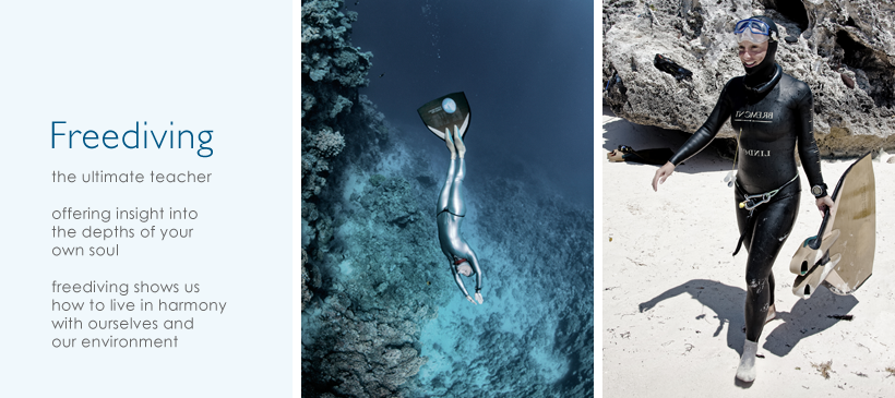 dyd-freediving.png