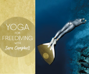 Yoga for Freediving - Banner 300x250.jpg