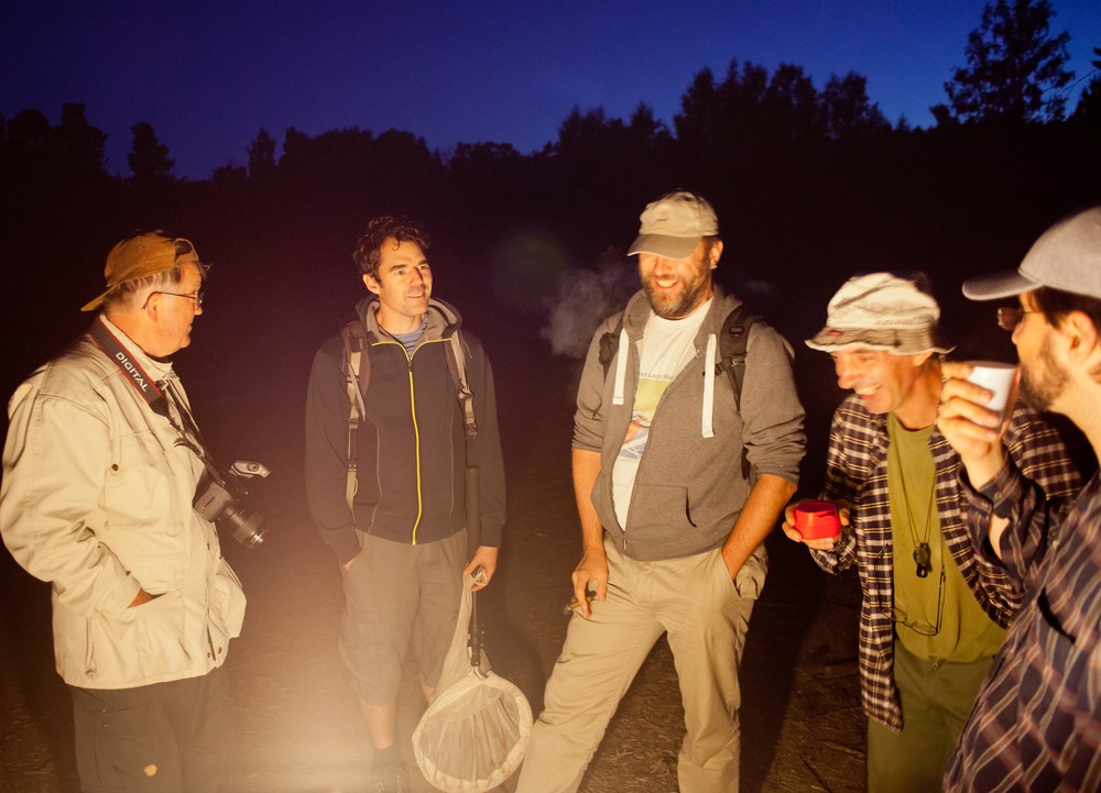 Entomologer umgås i väntan på att nattflygande insekter dyker upp vid en lampa vid exkursionen i Nackareservatet.
