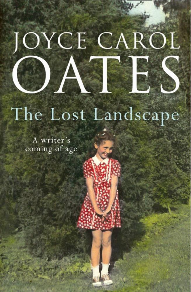 Best English Essay Topics The Lost Landscape By Joyce Carol Oates Good High School Essays also Essay On Healthcare The Lost Landscape By Joyce Carol Oates  Lonesome Reader Sample English Essay