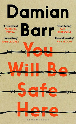 You Will be Safe Here Damian Barr.jpeg