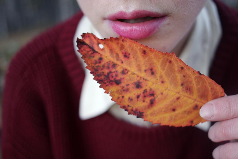 läppar löv2.jpg