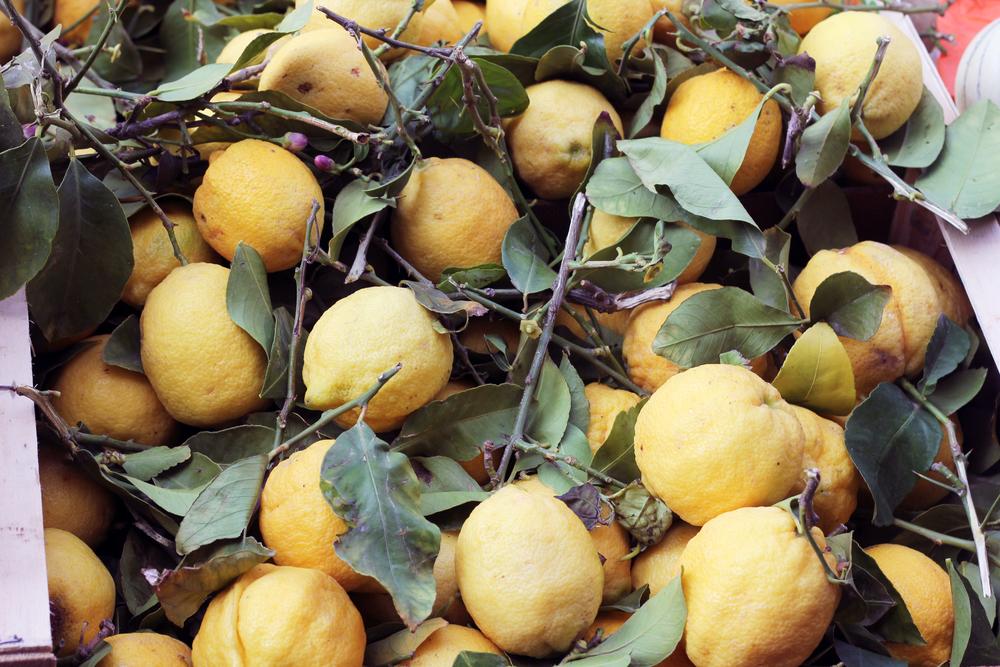 citronerna.jpg
