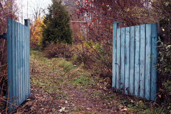 en blå grind2.jpg