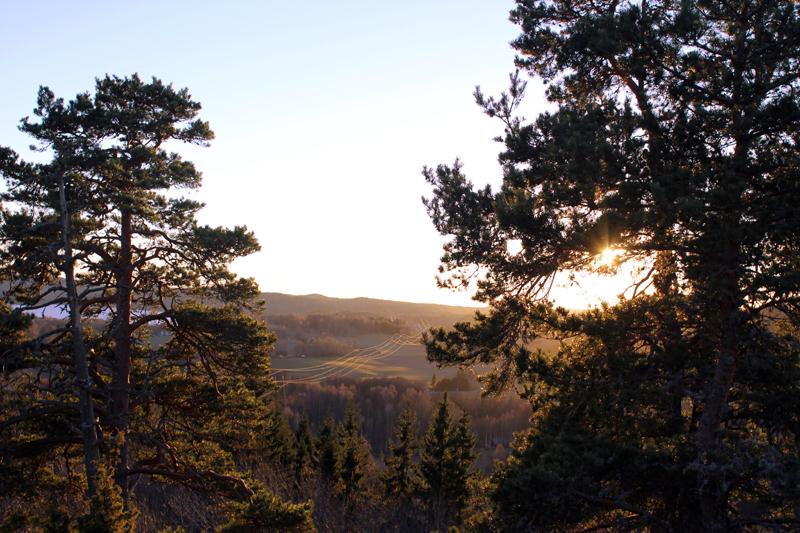 dalsland beauty.jpg