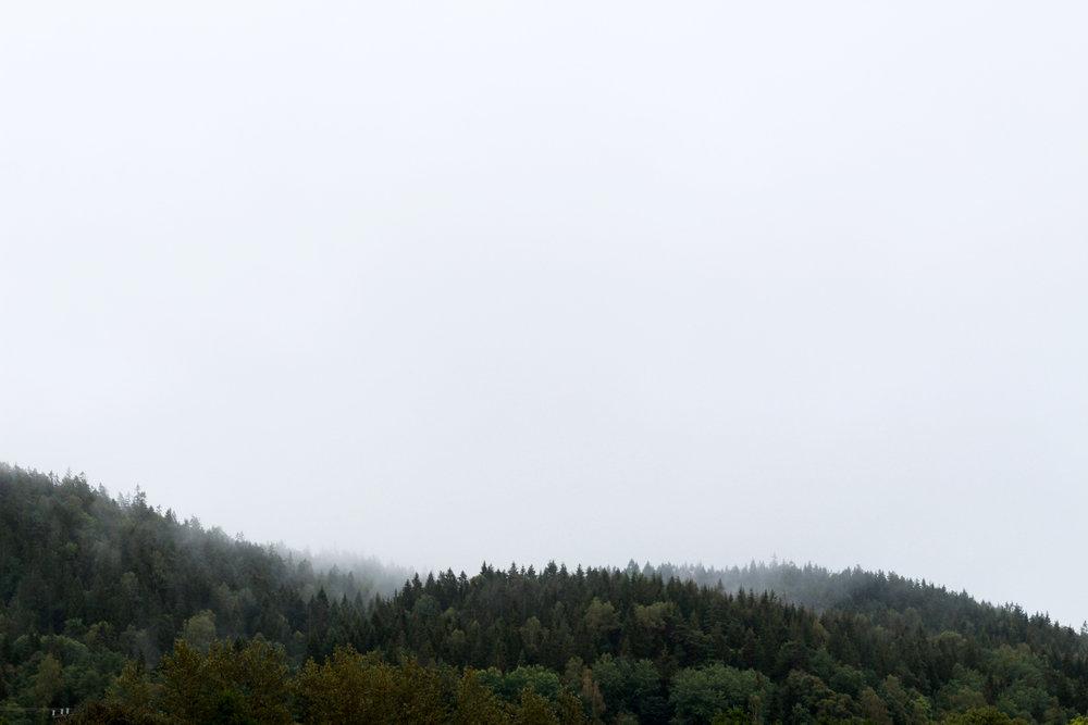 dimman.jpg