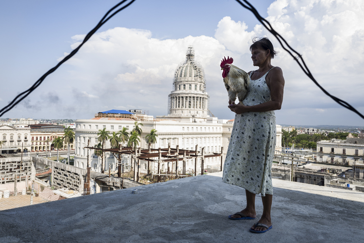 Havana-Color-Prints-1-8.jpg