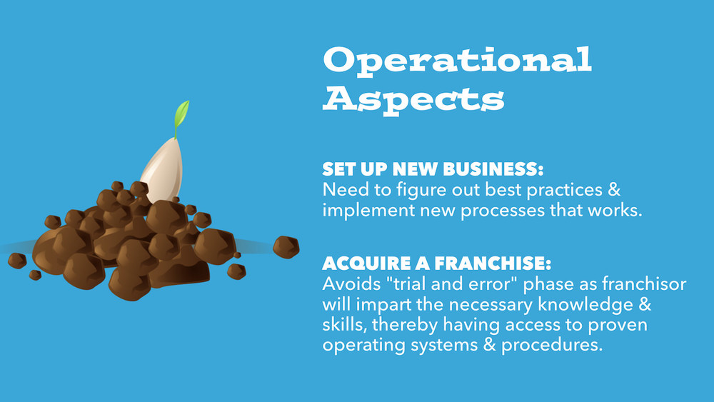 franchise-vs-new-business 3.jpg