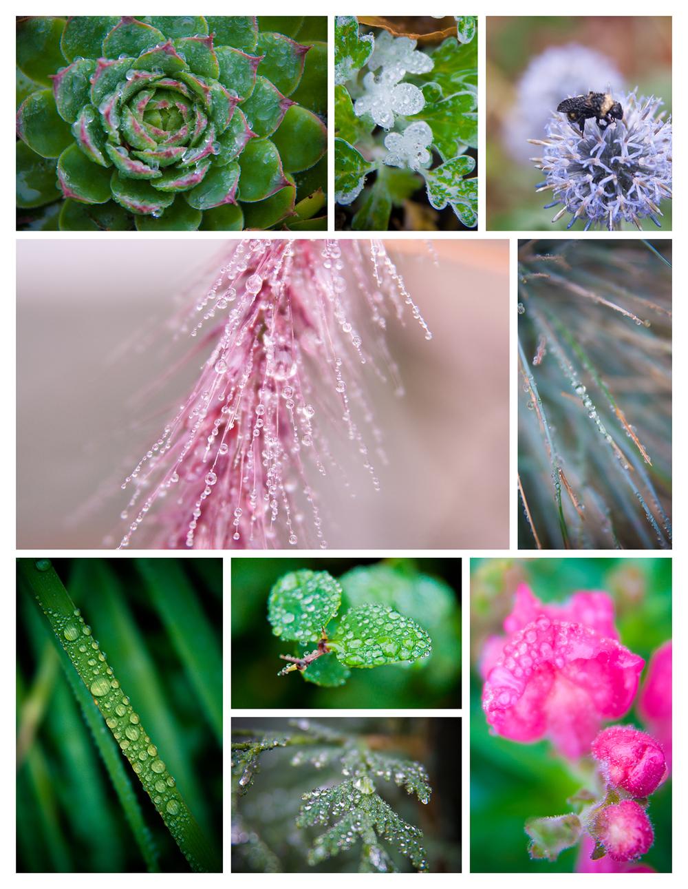 waterdropspageweb.jpg