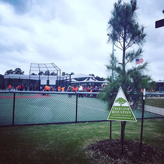 We are proud to provide trees for the new YMCA Miracle League Adaptive Sports Complex for all kids to enjoy! #openingday @ymcahouston