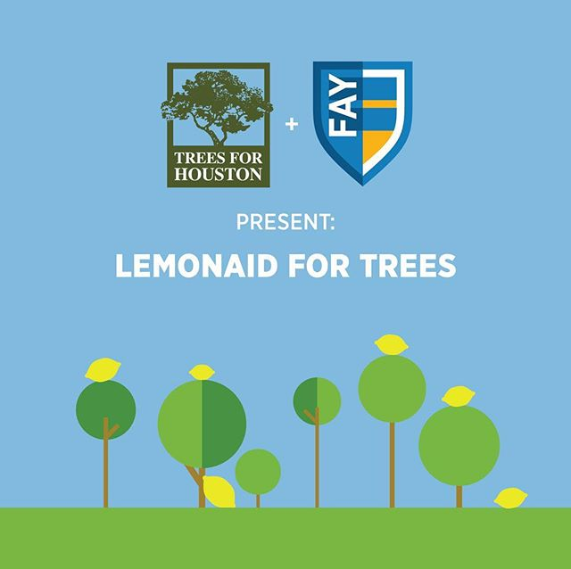 Be on the look out this weekend, April 22-21, and next weekend, April 28-29, for LemonAid stands. Students from The Fay School will be filling up their pitchers to raise funds for Trees For Houston! Thank you @the_fay_school 🌳🍋
