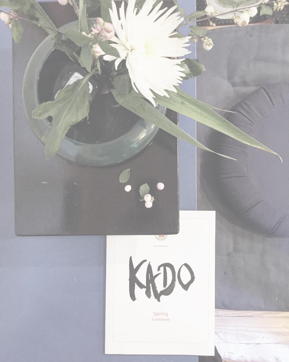 #myflowerstoday#kado#kadoikebana#chrysanthemum#mums