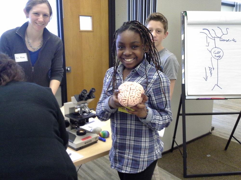 Brain Awareness Week 2013, visit from sixth graders from Salemwood School, Malden, MA