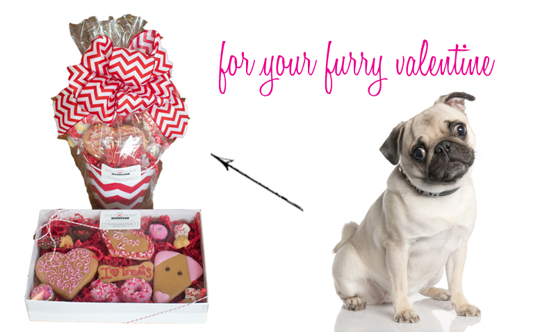 For you crazy dog moms like me,  Just Dogs  will make up the CUTEST little gift boxes for your furry friends. Treats are all in the $1-2 range and they'll help you put together a box that your dog will be happy to destroy as soon as you bring it home.