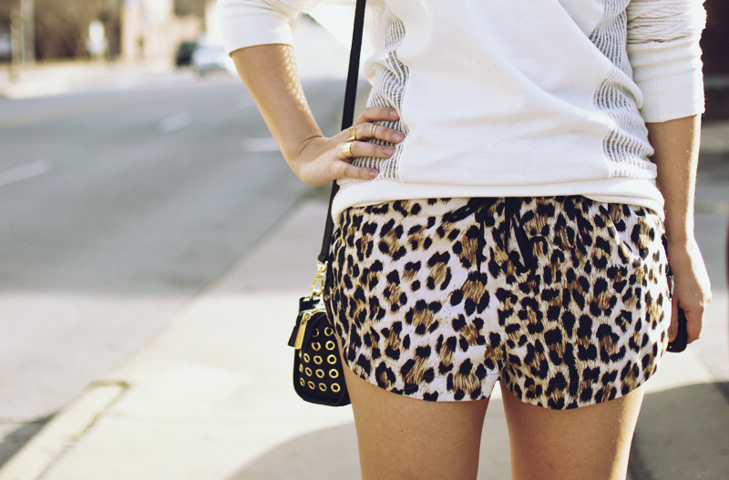 leopard-shorts-2.jpg