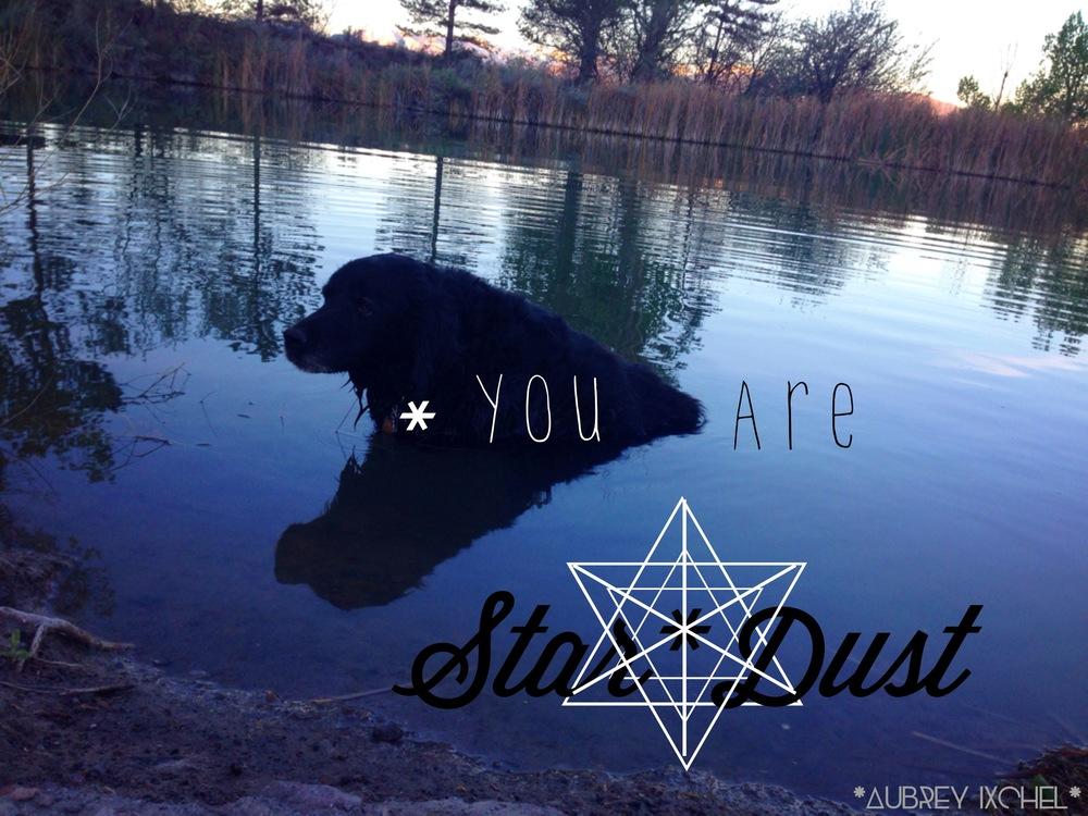 <3 Star*Dust