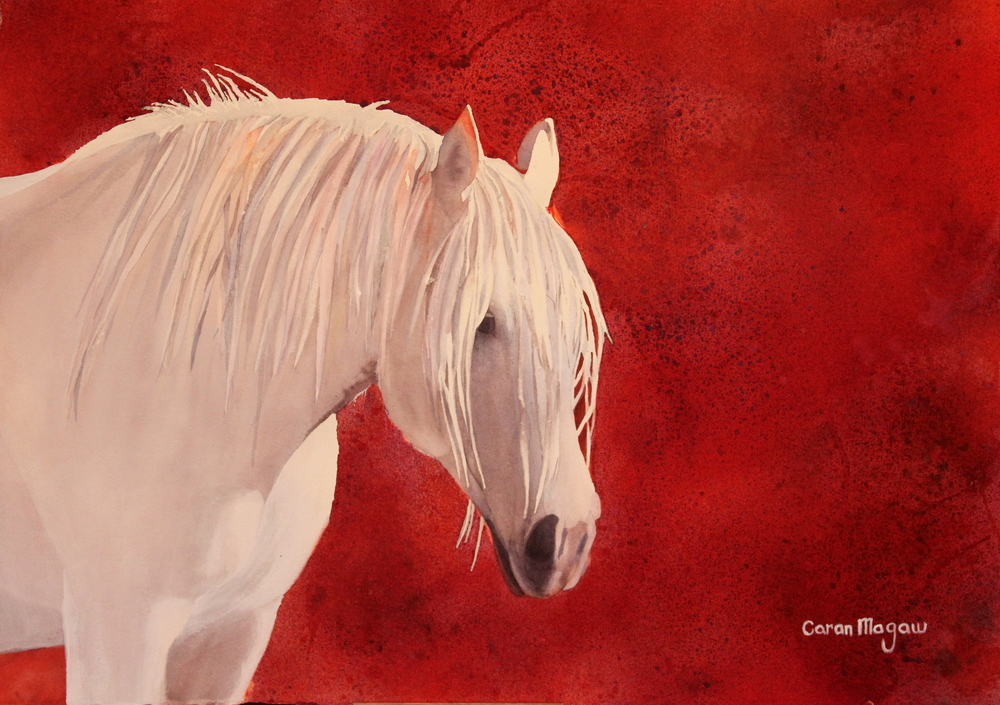 """Bold Mare"" Watercolour on Arches 300# Paper"