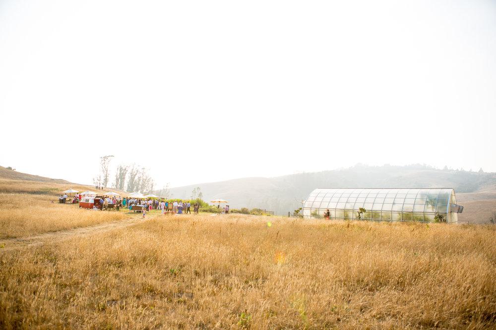 Joe-Tarak-hillside.jpg