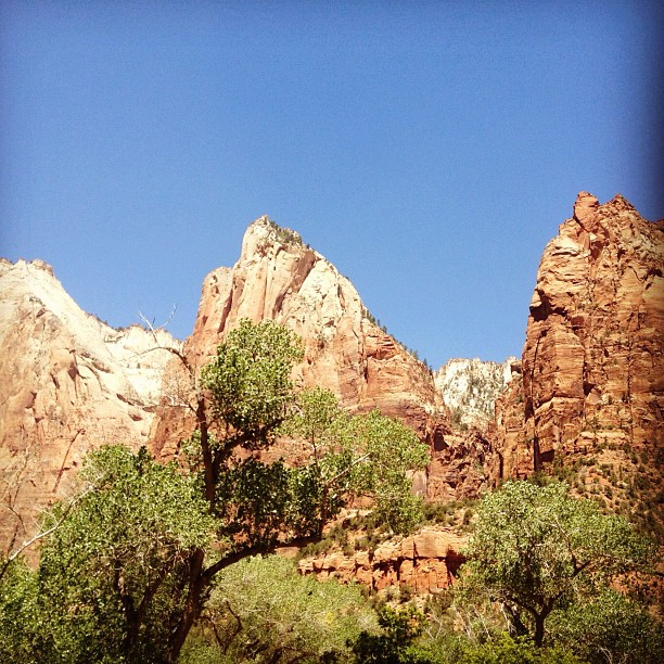 Jacob, Abraham, & Isaac. (Taken with  Instagram  at Zion National Park)