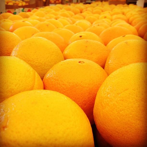 Orange oranges. (Taken with  Instagram  at Francisco's Fruits)