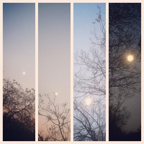 If we didn't have a moon, we'd be lost. Though I'm afraid of the dark, I enjoy when night falls.