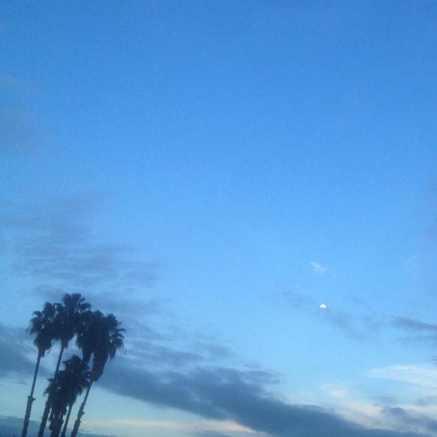 Mooning. #pasadena #ontheroad #alwayslookup #withoutafilter