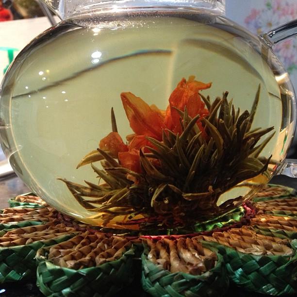 Brewin, bloomin flower green tea with vanilla. 🍵🌱#latenightdrink #herbnation #finallycleanedmy4slens (at Mia casa)