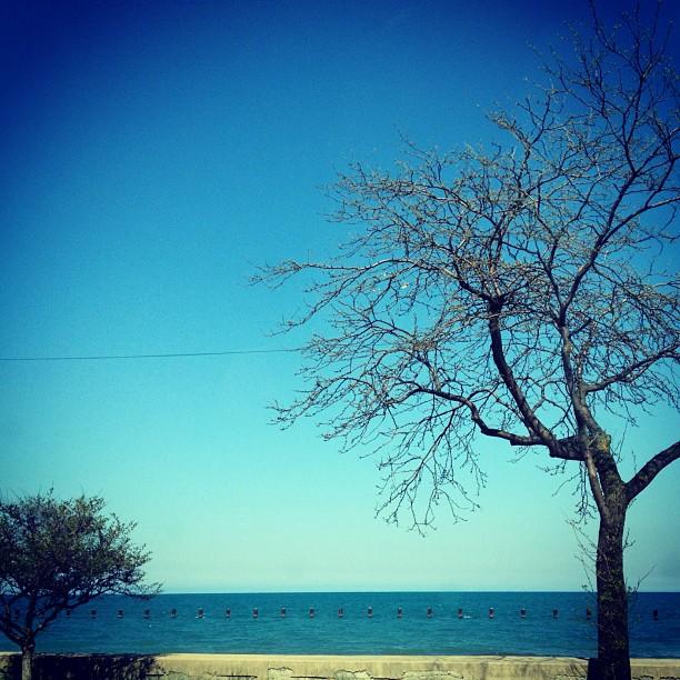 Lake Michigan. (Taken with  instagram )