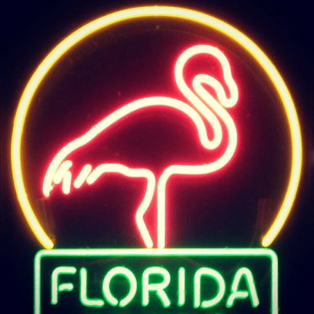 And I just learned that rapper guy Flo rida is from Flórida.. #miamitobeexact #ohdear #flamingosrockbtw #itsnevertoolatetolearn (at South Beach - Washington & 9th)