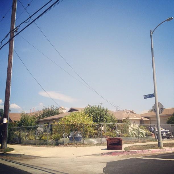 California raisin. @ave_ibarra #thoughtofyou