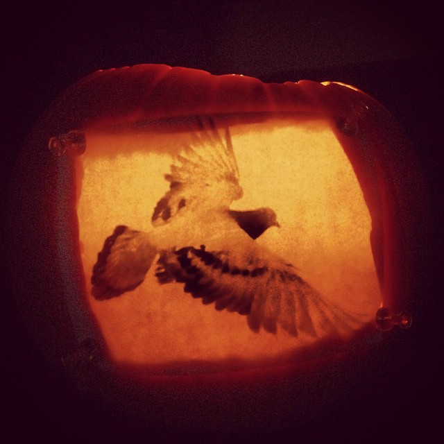 Finished my pumpkin  lantern in time to light the mood for #halloween the movie #amcfearfest #boo #thatsmybird #nocturnal  (at Mia casa)
