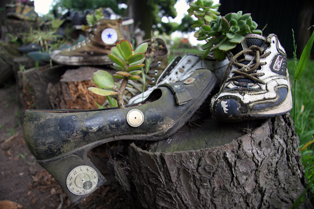 In most gardens, plants and flowers grow. In few, plants and flowers grow in shoes.