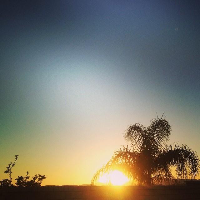 Valencia orange. #dawn #sunrise #17