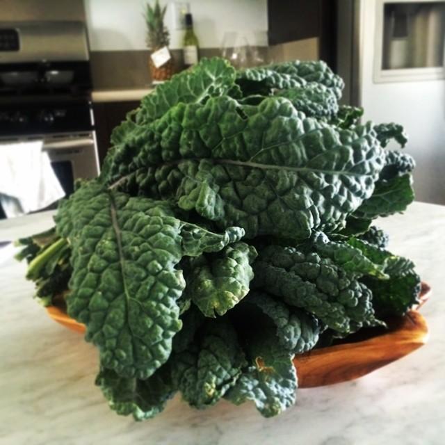 Kale from farmers market at Playa. #62014 #casaderdlc #greens