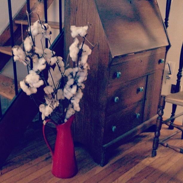 Gotta love cotton. (Taken with  Instagram  at 85th Street, Upper West Side)