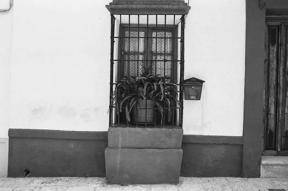 Spain-35.jpg