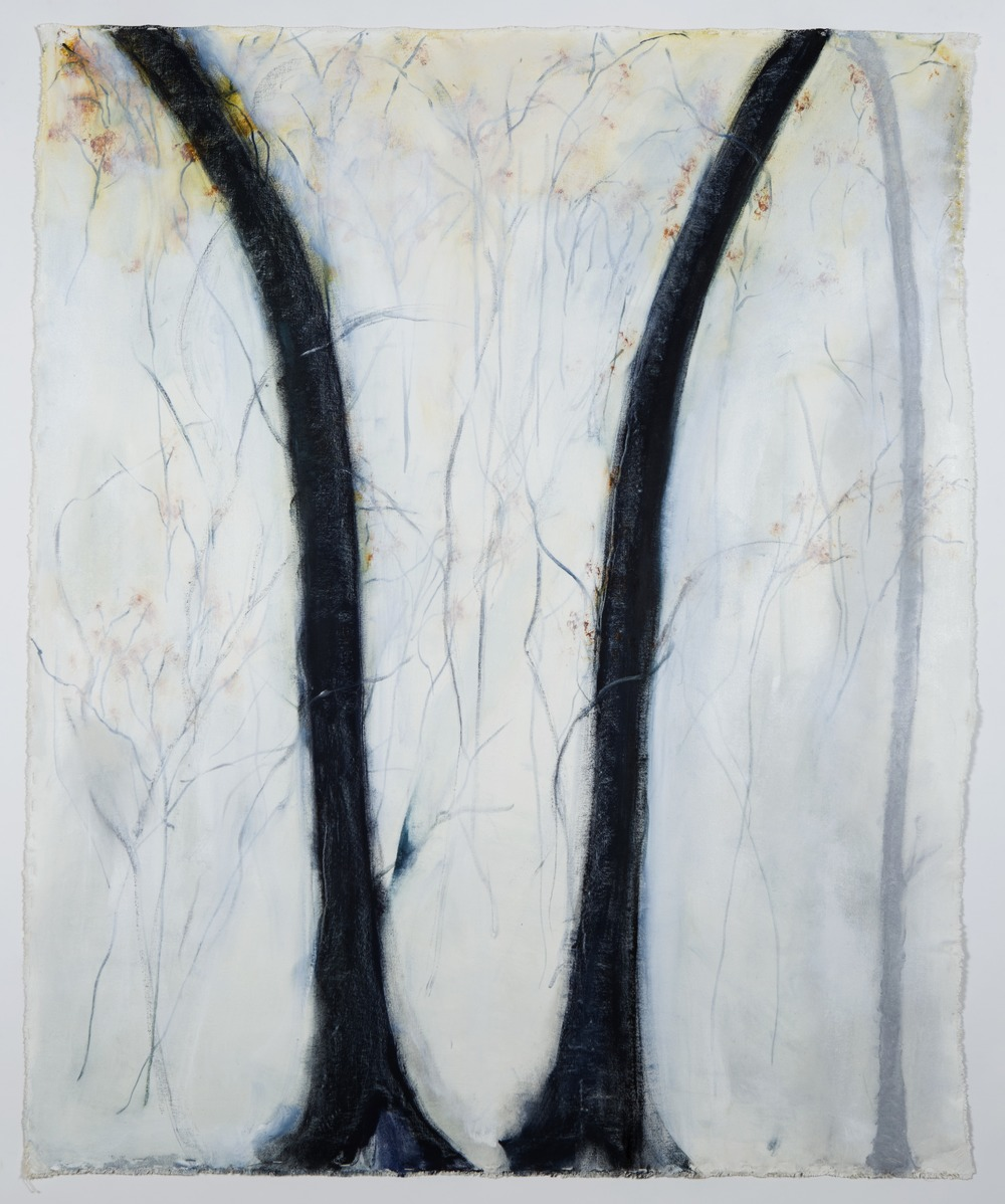 """Duo, 2014, oil and graphite on unstretched canvas,  60"""" x 49"""" -p1990lt40e1banbjk1ti817csg66.jpg"""