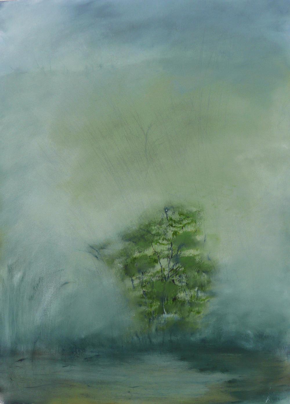 Tree in marsh-early morning SM.jpg
