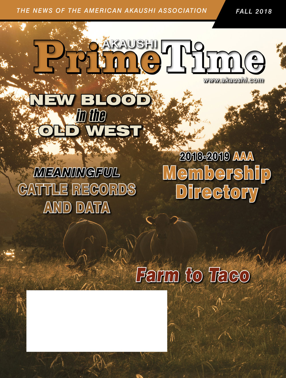 PTF18_cover_hires.jpg