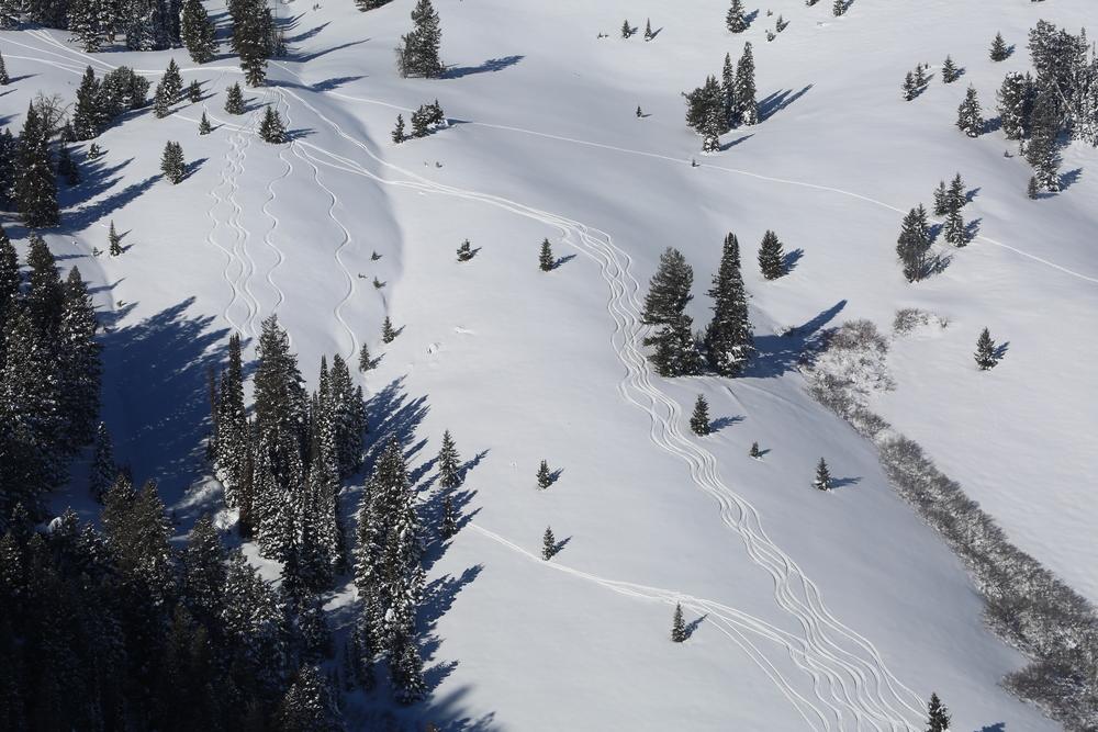SVHS skier tracks in remote terrain