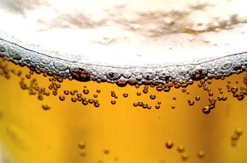 beerpic.jpg