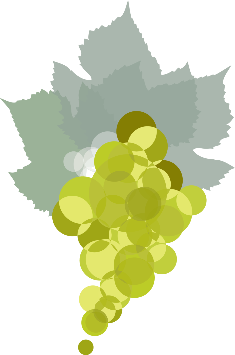 Voignier_Grapes.png