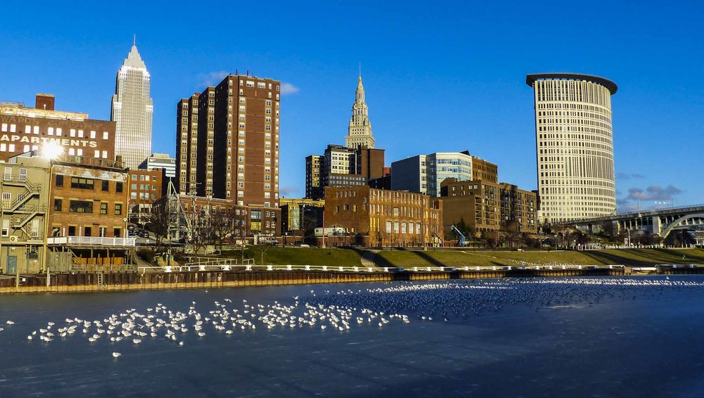 CLE_River Ice_Seagulls (1 of 1).jpg