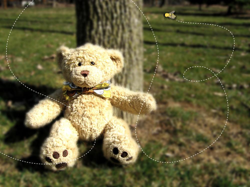 Bear-TreeTrunk.jpg