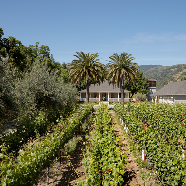 Vineyard Residence, Napa CA