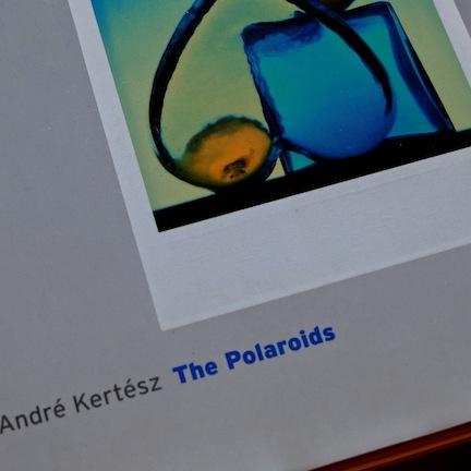 akThePolaroids.jpg