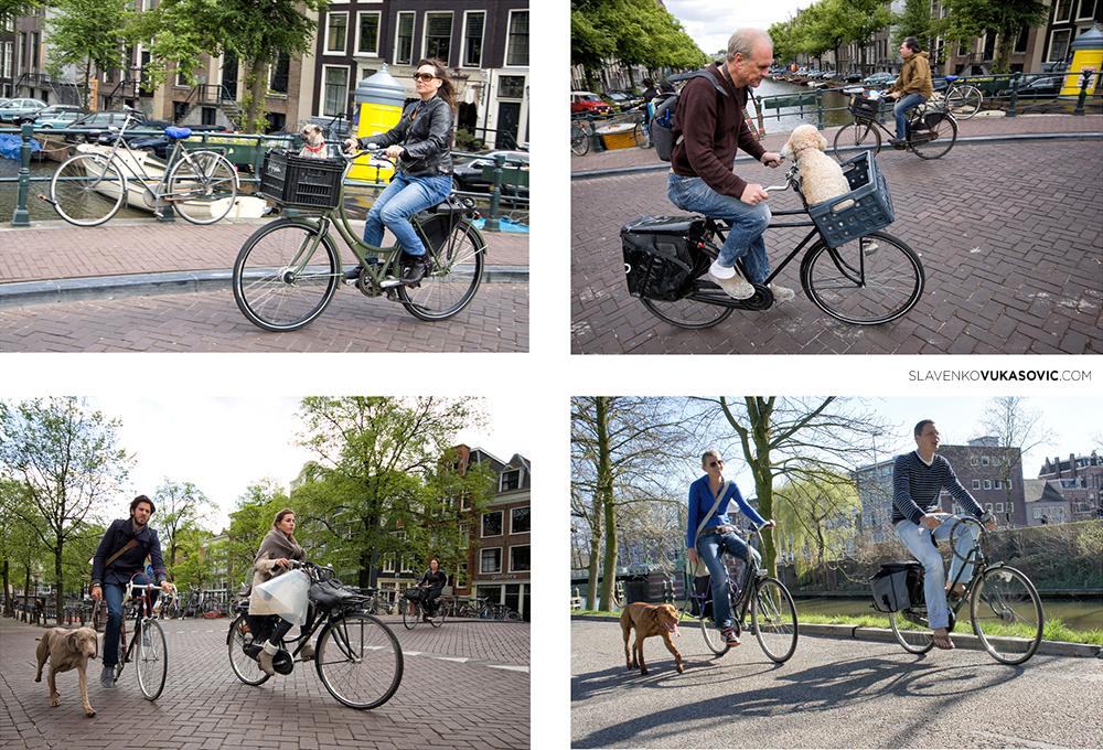 """""""Bicikliranje ima veliku ulogu u budućnosti. I treba da ima. Nešto nije u redu sa društvom u kome automobilom odlazimo u teretanu na trening."""" - Bil Naj """"The Science Guy"""""""